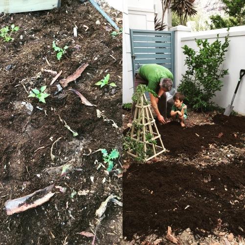garden-helpers