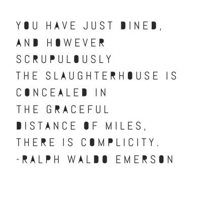 rwe quote